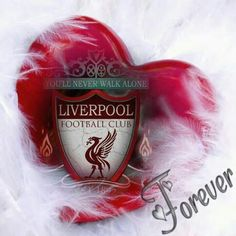 LFC Forever Liverpool Bird, Liverpool Tattoo, Liverpool Home, Liverpool Football Club, Liverpool Fc Wallpaper, Liverpool Wallpapers, 1.fc Union, This Is Anfield, Red Day