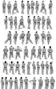 Find more information on martial arts tutorials Taekwondo Forms, Kung Fu, Shotokan Karate Kata, Goju Ryu Karate, Japanese Karate, Full Contact, Marshal Arts, Kyokushin, Martial Arts Techniques