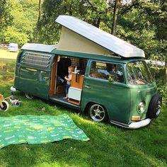 VW buses : Photo