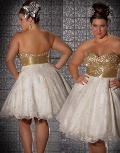 Fotos de vestidos cortos de 15 años para gorditas
