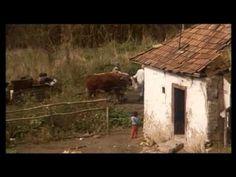 Cigánytörvény - Romani kris (1997)