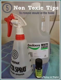 5 Non Toxic tips to remove mould in the home - Mummy Musings and Mayhem