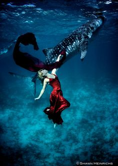 """Whale Shark Fashion"" #18 __ Photography: Shawn Heinrichs and Kristian Schmidt"