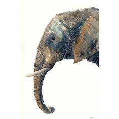 Elephant painting art African wildlife animal art by James Hollis, original animal paintings. Painted in watercolour artworks of Africa by British wildlife artist Size. Watercolor Artwork, Watercolor Animals, Painting Art, Watercolour, British Wildlife, Wildlife Art, Animal Paintings, Elephant Paintings, Original Paintings