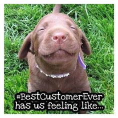 How we're feeling after a customer called to make sure we got our money because she has her product but doesn't see the charge on her account... #sweetestcustomerever #weloveourcustomers #honesty #huge smile 😍