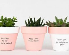 Modern personalized eco-friendly plant pots & by ChickadeePots Succulent Puns, Succulents Diy, Planting Succulents, Potted Plants, Plant Pots, Thank You Teacher Gifts, Teacher Christmas Gifts, Gold Dipped, Garden Gifts