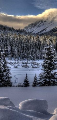 snowy winter Beautiful Nature