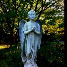 Angel at Mount Auburn Cemetery