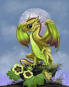 Gooseberry Dragon by Stanley Morrison