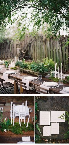 like the idea of potted centerpieces