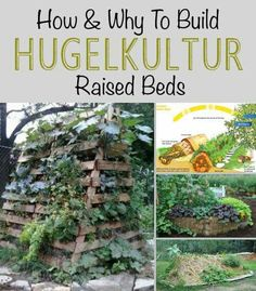 Hugelkultur Raised Beds