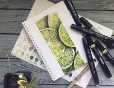 Освежающей кислятинки вам в ленту!😝 #art_markers #sketchbooks #рисованиемаркерами #скетчингмаркерами #limes #лютохудожник #sketchmarker…