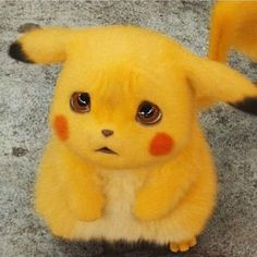 Madam outh v ja hon - Pokemon Ideen Baby Animals Super Cute, Cute Baby Cats, Cute Little Animals, Cute Pokemon Wallpaper, Cute Disney Wallpaper, Cute Cartoon Wallpapers, Pikachu Cat, Pikachu Drawing, Cute Animal Drawings