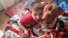 Rescued pit bull rescues suffering blood sugar crash LOVE Pitbulls, they're super smart, so loving and loyal. I wish more people could see them for who they really are! Dogs And Kids, Dogs And Puppies, Doggies, Old Boys, Happy Animals, Cute Animals, Boys Day, Nanny Dog, Boys Life