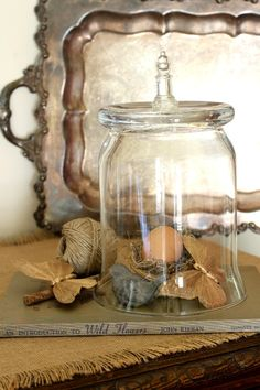 """Make a cloche from a plain glass vase - the is just too easy ... """"turn it  upside down and..."""""""