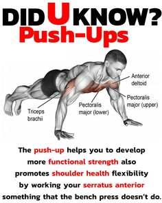 Why the push up? When you& ready to build strength and develop a tight and toned upper body and core, look no further than the push-up. his fantastic body weight exercise not only defines, strengthens and tones your body, but, it Gym Workout Tips, Fun Workouts, At Home Workouts, Fitness Workouts, Chest Workouts, Excercise, Workout Programs, Push Up, Health Fitness