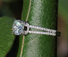 14k White gold  Diamond Engagement Ring  Halo at by BeautifulPetra, $6500.00