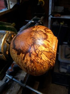 Hollow form made from spalted beech from Parkhurst forest, Isle of Wight. www.mtwoodturnery.com