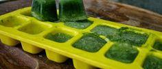 Gelo de chá-verde com vitamina E: para fechar os poros, eliminar espinhas e renovar a pele do rosto | Cura pela Natureza.com.br