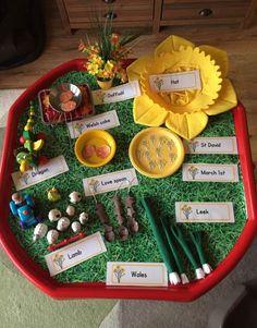 St David's Day tuff tray