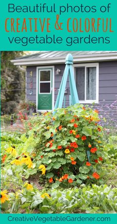 Awesome photos to help you dream and plan your garden for next season.