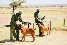 Dating jagers Kenia