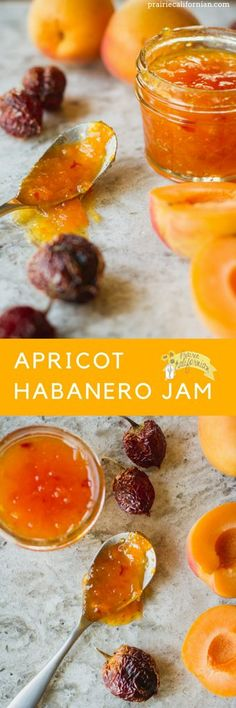 The perfect balance of sweet and spicy, this apricot habanero jam is great for a dipping sauce or appetizer over cream cheese! http://prairiecalifornian.com/apricot-habanero-jam/