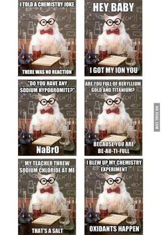 Chemistry Cat Jokes Compilation  If you laugh hysterically, you are my new friend!!! bahaha