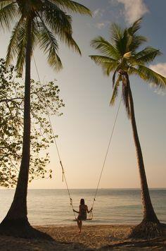 #palm #tree #swing #babe