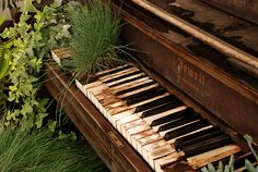 Take piano lessons again