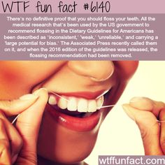 Is flossing your teeth beneficial? - Hmm!  ...My Dental Hygienist Thinks So!  ~WTF fun facts