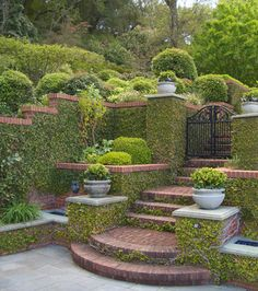 Beautiful landscaping and garden...