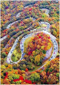 Chaloos Road - Iran, one of the most beautiful and colorful Roads on earth.
