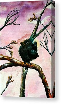 Watercolor Canvas Print featuring the painting Cute Raven by Medea Ioseliani