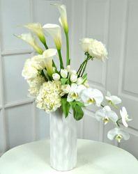 Callas & Orchids