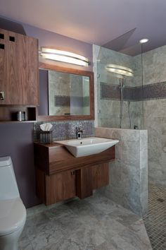 Handicapped friendly bathroom design ideas for disabled for Bathroom design dundee