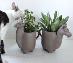 animal-herb-clay-pots.jpg 500×433 pixels