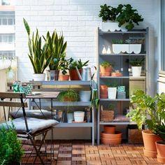 Compra éstas de IKEA por $34.99 dólares y ponlas de tal manera que abarquen la superficie de tu espacio.