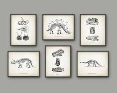 Dinosaur Print Set Of 6 Dinosaur Skeleton Prehistoric Geology Student Paleontology Fossil Book Plate Illustration Boys Bedroom is part of Boys bedroom Dinosaur - QuantumPrints Cool Bedrooms For Boys, Big Boy Bedrooms, Boys Bedroom Decor, Bedroom Ideas, Boys Dinosaur Bedroom, Dinosaur Posters, Dinosaur Prints, Dinosaur Dinosaur, Architecture Cool