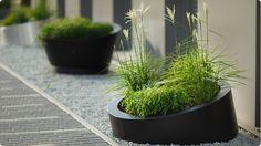 low B Plant Pot by Tomasz Augustyniak
