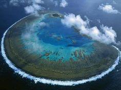 Isla Lady Musgrave, Gran barrera de coral, Australia