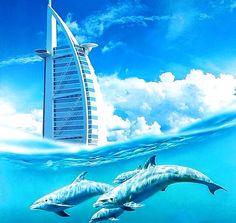 A beautiful view of Dolphins swimming near Burj Al Arab