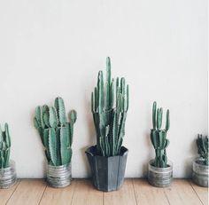 C'est le moment de faire le point sur nos bonnes résolutions de la rentrée : nouvelle école, nouveaux projets, nouvelles envies. Ce qui nous amène à un petit billet d'humeur. Toutes ces belles imag... #2016 #design #decoration #moderne #exterieur #interieur #plantes #inspiration #moodboard