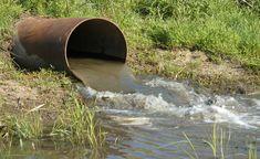 Poluição da água e seus perigos para a saúde e o meio ambiente