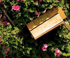 Vía la Calera hay una pequeña casa campesina que nos recibe con este buzón artesanal, tan artesanal que se le olvido ponerle la tilde.