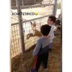 #5m #ChisteTipico 💥😂
