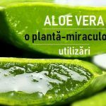 Hey Guys, Tried using aloe vera in your hair care routine yet? I love using aloe vera in my hair care and skin care routine. I usually extract fresh aloe Natural Hair Growth, Natural Skin Care, Natural Hair Styles, Home Remedies, Natural Remedies, Holistic Remedies, Gel Aloe, Aloe Vera For Hair, Aloe Vera Gel For Hair Growth