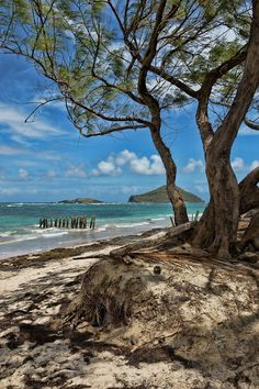 Coconut Bay, Saint Lucia
