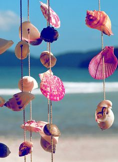 Turn old shells into super-cute beachy decor with a bit of paint! Hang them up in your bathroom for bright, bold makeup inspiration. | Mary Kay
