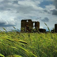 Villa dei Quintili - Parco Appia Antica